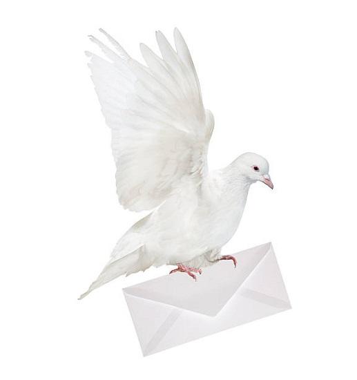 Mensajeros de la Paz: 55 años al servicio de los más desfavorecidos