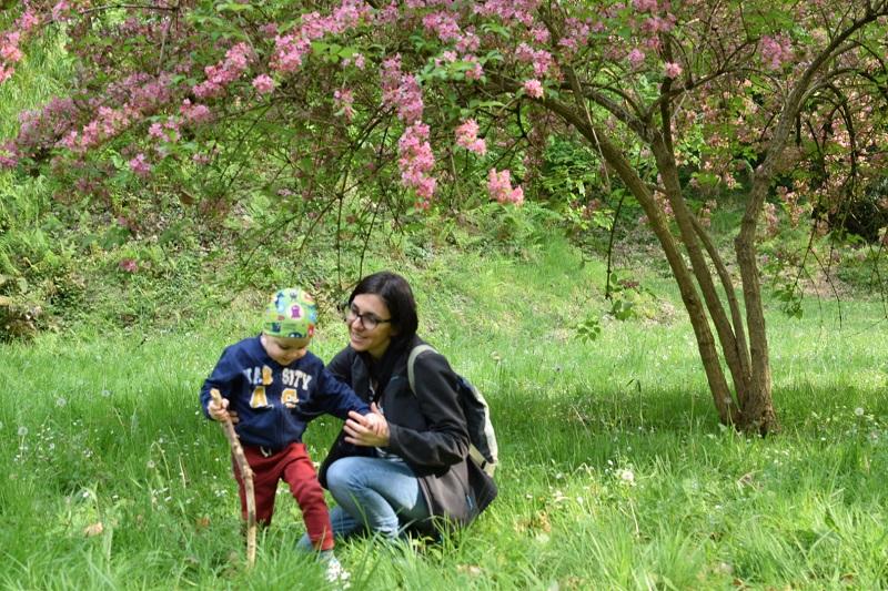 Carta a los padres y madres de niños con cáncer
